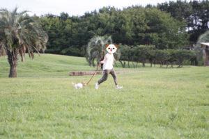 辻堂海浜公園で走るテバちゃん