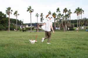 辻堂海浜公園で走る子犬テバちゃん
