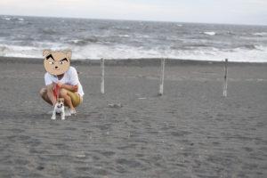 荒波とジャックラッセルテリアの子犬テバちゃん
