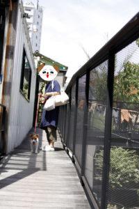 代々木VILLAGE2Fを歩く子犬テバちゃん