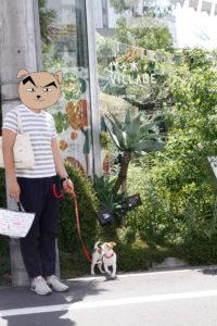 代々木VILLAGE入口の子犬テバちゃん