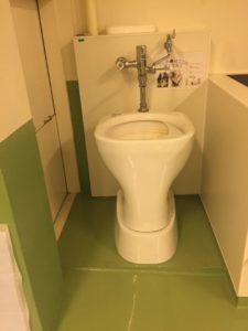 ペットのうんぽこ専用トイレ