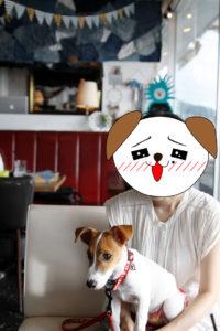 メルシーキャンプ内の子犬テバちゃん