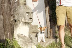 材木座テラス横の謎の石像と子犬テバちゃん