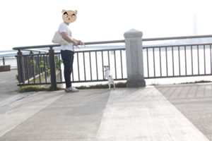 海を見て黄昏る子犬テバちゃん
