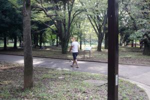 代々木公園内を歩く子犬テバちゃん
