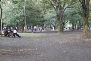 遠目からの代々木公園ドッグラン