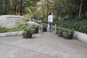 総合レクリエーション公園に踏み入れる子犬テバちゃんとテバdaddy