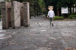 不思議なオブジェと子犬テバちゃん