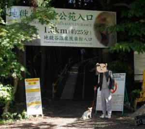 地獄谷野猿公苑前の子犬テバちゃん