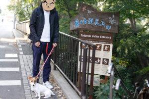 等々力駅側入口と子犬テバちゃん