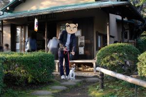 書院前の子犬テバちゃん