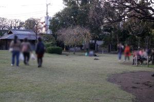 庭園の芝生広場