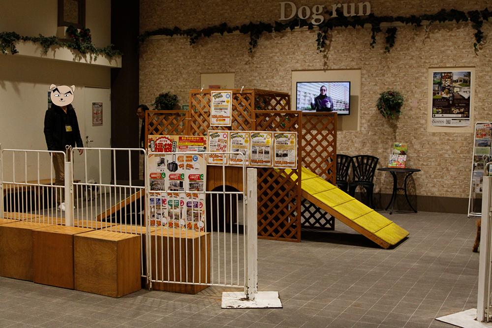 JOKER室内ドッグラン滑り台