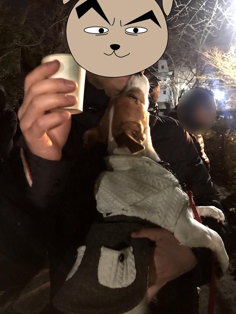 甘酒を欲しがる子犬テバちゃん