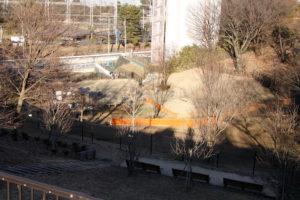 都立桜ケ丘公園ドッグラン